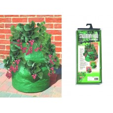 Reusable Patio Strawberry/Herb Planter Bag